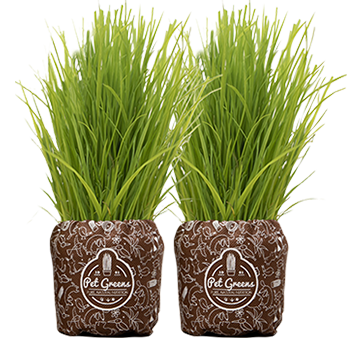 double-grass-new